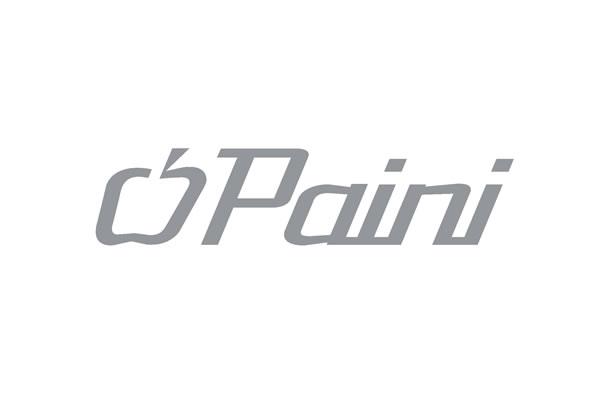 brand_paini